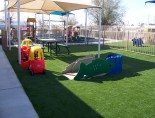 FlexGrass Synthetic Grass