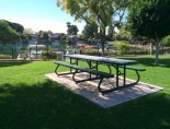 Premier Polysteel Picnic Table